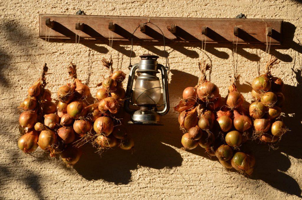 Repro Eko hanging onions