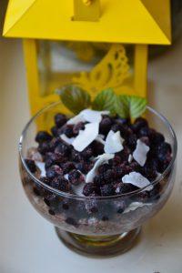 Repro Eko wild blueberries&chia